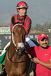 ARCADIA, CA   FEBRUARY 3 :  #5 Itsinthepost, ridden by Tyler Baze, return to the connections after winning the San Marcos Stakes (Grade ll) on February 3, 2018 at Santa Anita Park in Arcadia, CA.(Photo by Casey Phillips/ Eclipse Sortswire/ Getty Images)