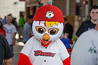 Rowly, the Orem Owlz mascot, before the game against the Ogden Raptors in Pioneer League action at Home of the Owlz on June 20, 2015 in Provo, Utah.  (Stephen Smith/Four Seam Images)