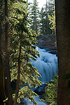 Cascade waterfall on alpine stream near Suzie Lake, Desolation Wilderness, High Sierra, near Lake Tahoe, California