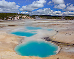 Yellowstone National Park, WY <br /> Aqua colored hot spring water in the Colloidal Pool in the Porcelain Basin, Norris Geyser Basin