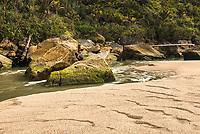 Coastaline at Kohaihai River near Karamea, Kahurangi National Park, Buller Region, West Coast, New Zealand, NZ