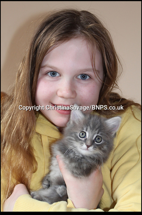 BNPS.co.uk (01202) 558833<br /> Picture: ChristinaSavage/BNPS.co.uk<br /> <br /> Abbey Morris with brave kitten Petal.<br /> <br /> Brave kitten Petal has been born with a rare condition radial hypoplasia that means she has no bones after the elbow joint in her front legs so she has to sit on back on her hind legs like a squirrel, earning herself the cute nickname 'Squitten'. The five-month-old cat tries to scamper along like other felines but has no choice but to slouch forward onto her crooked limbs. The condition is believed to be the result of a group of unneutered cats being kept inside a house which led to severe inbreeding. Petal has now been adopted from Yorkshire Cat Rescue in Keighley, West Yorks, by Kerry Bowler, 36, who has another cat, Honey, with a similar condition.