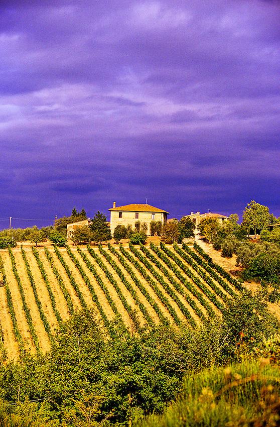 """""""Strada Chiantigiana"""" between Siena and Castellina in Chianti, Tuscany, Italy;"""