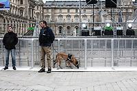 Festeggiamenti per le elezioni di Macron presidente, polizia e cane poliziotto