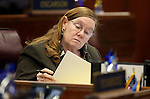 Nevada Assemblywoman Maggie Carlton, D-Las Vegas, works on the Assembly floor at the Legislative Building in Carson City, Nev., on Friday, April 3, 2015. <br /> Photo by Cathleen Allison