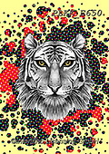 Kris, REALISTIC ANIMALS, REALISTISCHE TIERE, ANIMALES REALISTICOS, paintings+++++,PLKKE650,#a#, EVERYDAY,tiger