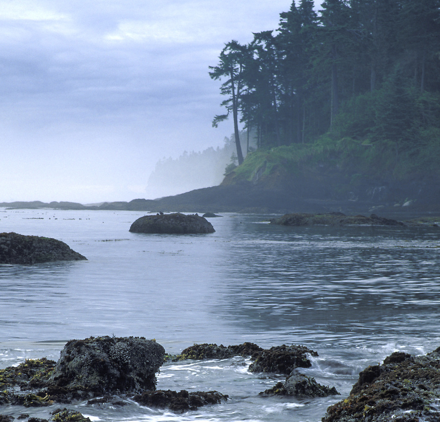 Coastal shoreline, Strait of Juan de Fuca, Washington