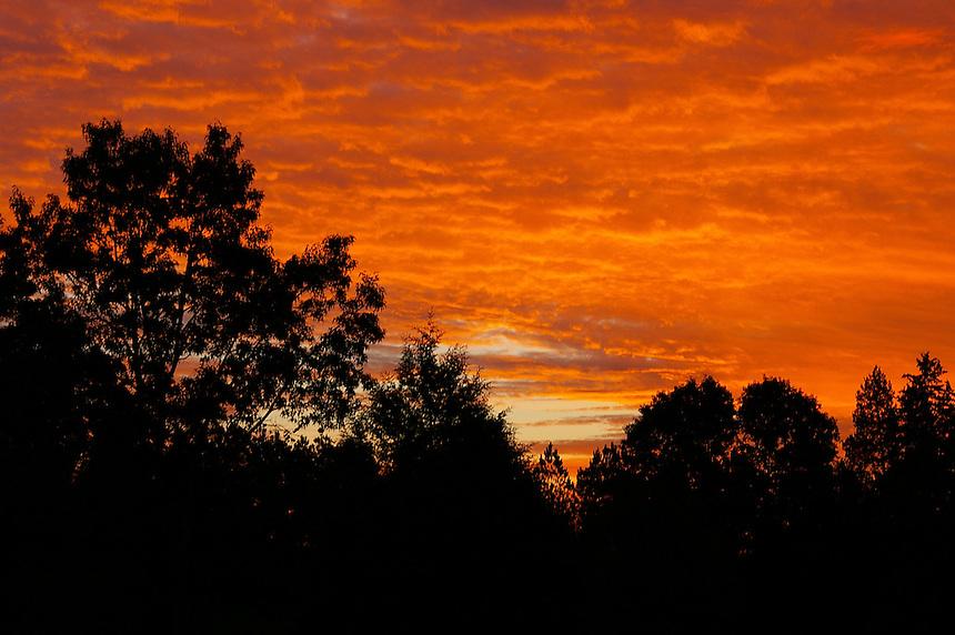 Orange sky at sunrise, Saline County, Arkansas
