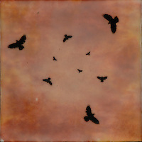 Murder of crows at sunset encaustic painting