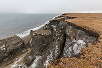 The cliffs along the shore of Barter Island erode from storm and wave action from the Beaufort Sea, Arctic, Alaska.