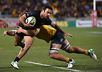 Pumas player  Martin Landajo gets tackled during the Rugby Championship match between Australia and Argentina in Canberra on September 16, 2017. AFP PHOTO / MARK GRAHAM --- IMAGE RESTRICTED TO EDITORIAL USE - STRICTLY NO COMMERCIAL USE --