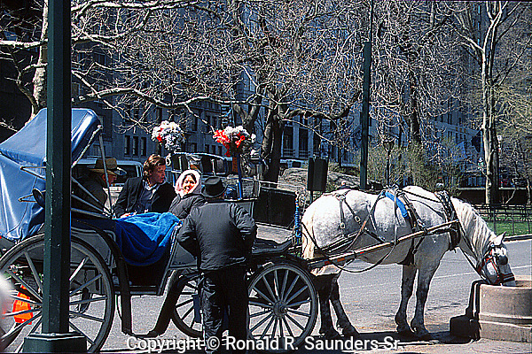 PASSENGERS & COACHMAN PAUSE TO ALLOW HORSE TO DRINK