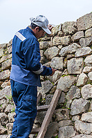 Peru, Machu Picchu.  Historic Preservation.  Quechua Worker Removing Moss and Weeds from Crevices of Stonework.
