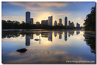 I always enjoy photographing the Austin skyline. Images like this motivate me to get out of bed early and enjoy the views when all is quiet and still. On this particular morning, I felt I was running late. I arrived at this location - Lou Neff Point in Zilker Park on the shores of Ladybird Lake - slightly later than I had planned. <br /> <br /> But after that, everything seemed to work out. The skies were colored with fast moving clouds. And I was lucky when a few swans came to play around the place I was standing. This Austin skyline picture was from one of those lucky moments.<br /> <br /> If I had my pick, the swan would have swam to this point about 15 seconds later so sun burst would have been slightly bigger. But I can't control the animals or the sun, so I just capture the Austin photos I'm given. <br /> <br /> This is one of my favorite places to photograph Texas images... especially at sunrise on mornings such as this.