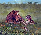 GIORDANO, REALISTIC ANIMALS, REALISTISCHE TIERE, ANIMALES REALISTICOS, paintings+++++,USGI2677,#A# horses,
