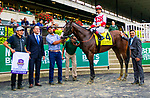 "OCTOBER 6, 2018 : Complexity, ridden by Jose Ortiz, wins the ""Win & You're In"" Champagne Stakes on Champagne Stakes Day at Belmont Park on October 6, 2018 in Elmont, NY.  Sue Kawczynski/ESW/CSM"