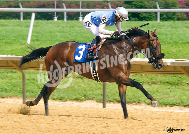 Unblunted winning at Delaware Park on 8/10/16