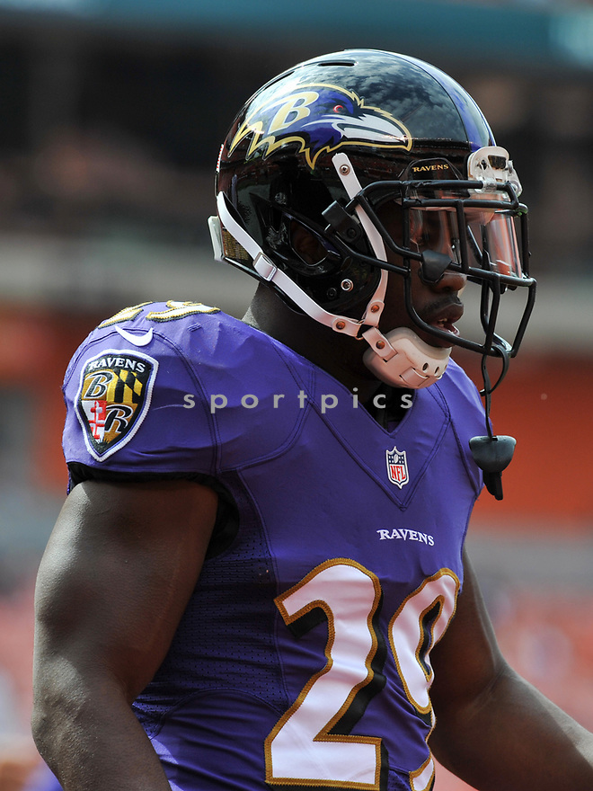 CLEVELAND, OH - JULY 18, 2016: Running back Justin Forsett #29 of the Baltimore Ravens stands on the field prior to a game against the Cleveland Browns on July 18, 2016 at FirstEnergy Stadium in Cleveland, Ohio. Baltimore won 25-20. (Photo by: 2017 Nick Cammett/Diamond Images)  *** Local Caption *** Justin Forsett(SPORTPICS)