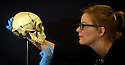 ZOE WILCOX, LEAD CURATOR, WITH A HUMAN SKULL PRESENTED TO SARAH BERNHARDT BY VICTOR HUGO FOR HER PERFORMANCE AS HAMLET  ON LOAN FROM THE VICTORIA AND ALBERT MUSEUM WHICH WILL BE ON DISPLAY AS PART OF THE BRITISH LIBRARY'S UPCOMING EXHIBITION SHAKESPEARE IN TEN ACTS. PHOTO BY CLARE KENDALL. 04/04/2016.