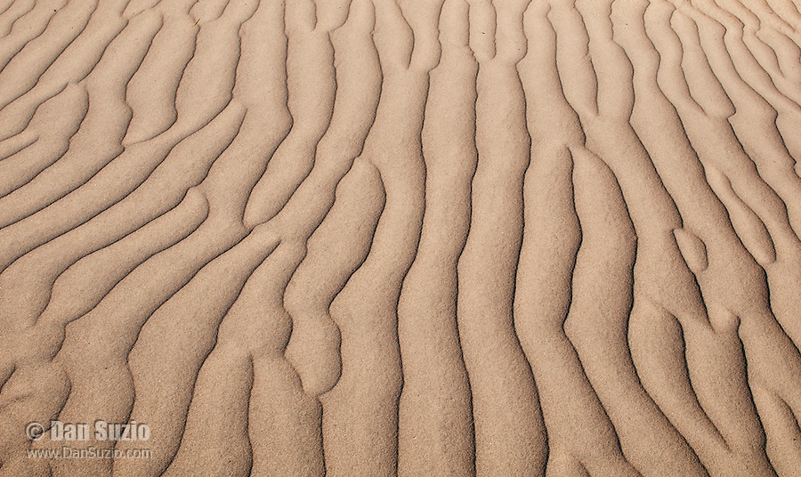 Ripples in sand dunes, Saline Valley, Death Valley National Park, California