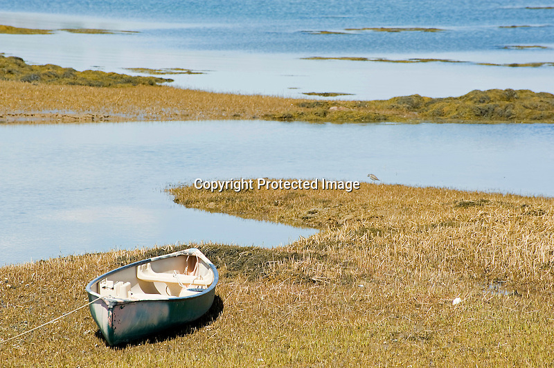 Small Boat Moored on Saltmarsh on the Coast of Maine