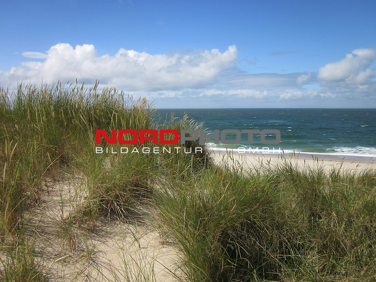 08.08.2013, Nordseeinsel Sylt, GER, im Bild Duenenlandschaft am Ellenbogen, Foto © nph / Kohring