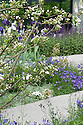Daily Telegraph Garden, designed by Ulf Nordfjell, RHS Chelsea Flower Show 2009. Purple flowers include Campanula rotundifolia (Harebell) and Salvia nemorosa 'Caradonna'.
