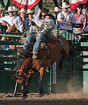 Kyle Bowers from Drayton Valley, AB competes in the bareback bronc riding event during the Reno Rodeo in Reno, Nevada on Sunday, June 19, 2016.