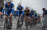 Belgian National Champion Yves Lampaert (BEL/Deceuninck Quick Step) in the peloton<br /> <br /> 71st Kuurne-Brussel-Kuurne (2019)<br /> Kuurne > Kuurne 201km (BEL)<br /> <br /> ©kramon