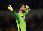 Rui Patricio of Wolverhampton Wanderers during the Premier League match at Molineux, Wolverhampton. Picture date: 14th February 2020. Picture credit should read: Darren Staples/Sportimage