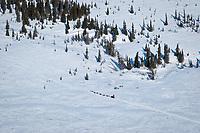 Aerial of Aliy Zirkle as she runs on the trail to Shaktoolik during Iditarod 2009