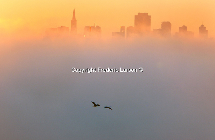 On the shores of Sausalito you could see the sunrise over the fog as it illuminated the San Francisco skyline.