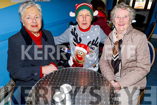 Vera O'Connor, Wendy Woods and Eileen Phelan at the St Johns Christmas Fair in Teach an tSolais on Saturday morning.