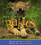 Fabulous up-close photos introduce the adorable offspring of 26 animals of the Pacific Northwest, ranging from red fox kits and coho salmon fry to harbor seal pups. Helman's brief but descriptive and informative text focuses on interesting attributes of each animal, and the book's bold design, with jazzy borders, brilliant colors, and bouncy type, dresses up the heartwarming pictures. The book is designed for young children. Watermark does not appear on product.