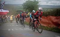 Bjorg Lambrecht (BEL/Lotto-Soudal) up the Côte de La Redoute<br /> <br /> 105th Liège-Bastogne-Liège 2019 (1.UWT)<br /> One day race from Liège to Liège (256km)<br /> <br /> ©kramon