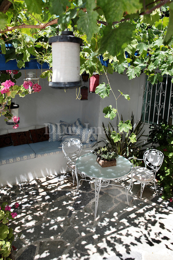 traditional terrace with plants