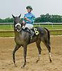Case Cracker winning at Delaware Park on 6/11/12