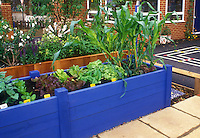 Vegetable garden with elevated wooden raised beds for easy access while standing or handicapped, mixed lettuce, corn, salad greens, flowers, brick house, vines, patio, blacktop, stone walk
