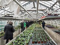 Gew&auml;chshaus, Bodensee - Insel Mainau, Baden-W&uuml;rttemberg, Deutschland, Europa<br /> Greenhouse, Isle of Mainau, Lake Constance, Baden-W&uuml;rttemberg, Germany, Europe