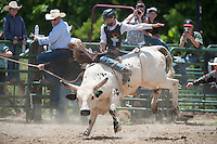 VHSRA - New Kent, VA - 6.10.2014 - Bull Riding