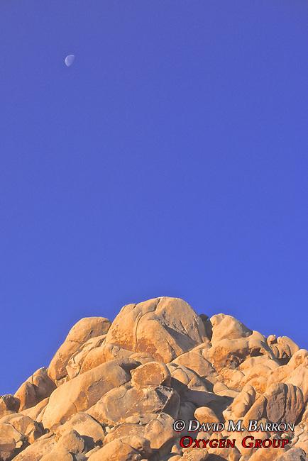 Joshua Tree Boulders & Moon