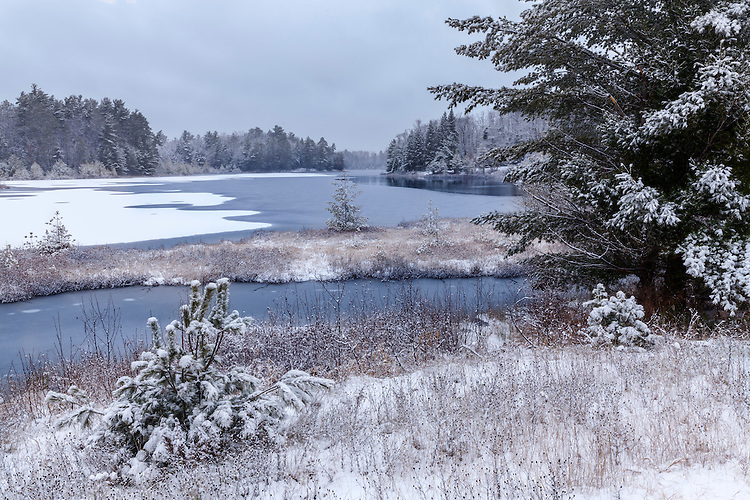 Snow storm on Little Carr Lake; American Legion State Forest, WI