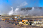 Yellowstone National Park, Wyoming: Small geysers erupting in the Black Sand Basin