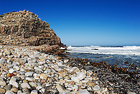 Shore at Cape of Good Hope, Cape of Good Hope, Western Cape Province, South Africa