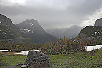 Glacier National Park in fog with trees, rocks and glaciers in foreground