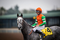 ARCADIA, CA - FEBRUARY 06: Unique Bella #4, ridden by Mike Smith returns victorious after the  Las Vigenes Stakes at Santa Anita Park on February 6, 2017 in Arcadia, California. (Photo by: Alex Evers/Eclipse Sportswire/Getty Images)