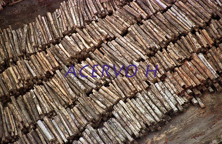 A maior opera&Aacute;&bdquo;o feita at&Egrave; ent&bdquo;o na Amaz&Ugrave;nia resultou na apreen&Aacute;&bdquo;o de 9 mil m&ge;de mogno. O Ibama encontrou esta grande quantidade de madeira escondida no meio da floresta. A a&Aacute;&bdquo;o durou mais de uma semana contou com o apoio do Greenpeace e 6 aeronaves.<br /> Uruar&middot;-Par&middot;-Brasil30/10/2001<br /> &copy;Foto: Paulo Santos/Interfoto <br /> Negativo N&int; 8083