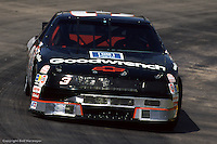 MARTINSVILLE, VA - APRIL 26: Dale Earnhardt drives during practice for the Hanes 500 on April 26, 1992, at the Martinsville Speedway near Martinsville, Virginia.