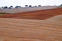 Barren fields outside the winery. Henrque HM Uva, Herdade da Mingorra, Alentejo, Portugal