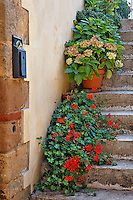 Flower pots on stairs, Montalcino, Italy, Tuscany